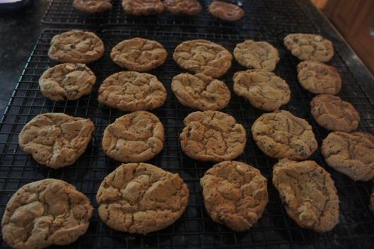 Peanut Butter Chocolate Chip Truffle Cookies - Gluten Free