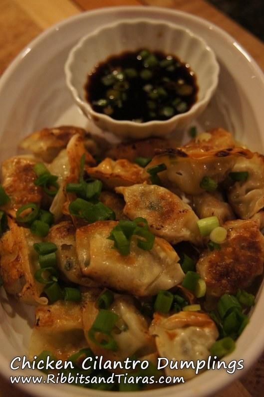 Chicken Cilantro Dumplings