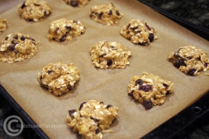 Banana oatmeal cranberry cookies