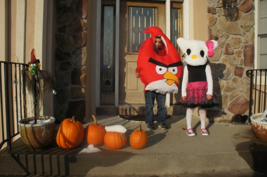 ANgry Bird and Hello Kitty Costume